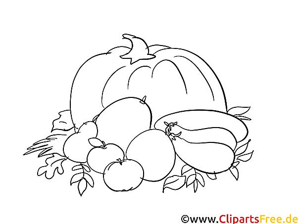 Herbst-Ernte - Kostenlose Ausmalbilder Herbst