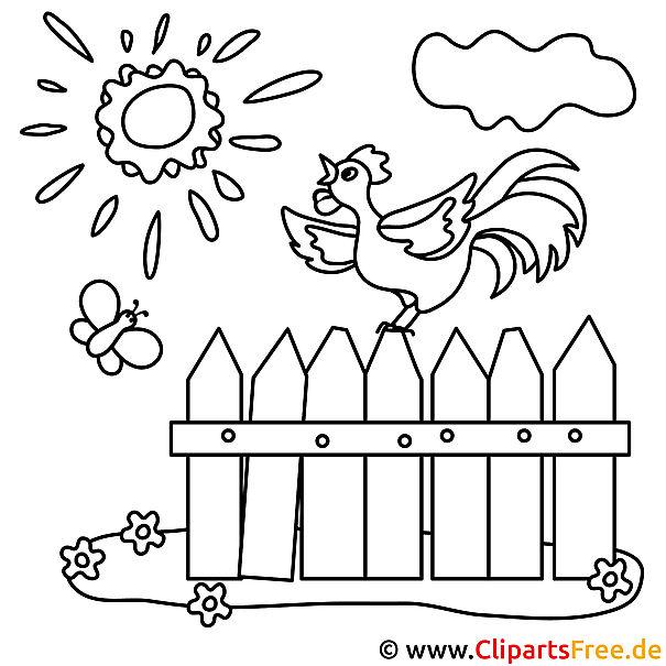 Huhn Bild zum Ausmalen, Malvorlage