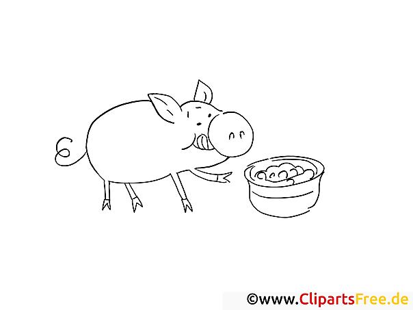 Schwein Malvorlage-Ausmalbild