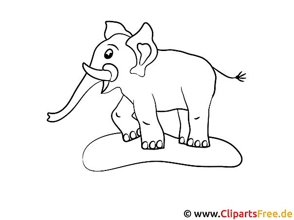 ausmalbild elefant zum ausmalen