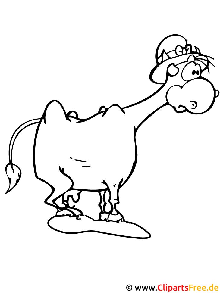 Kuh Malvorlage Bauernhof