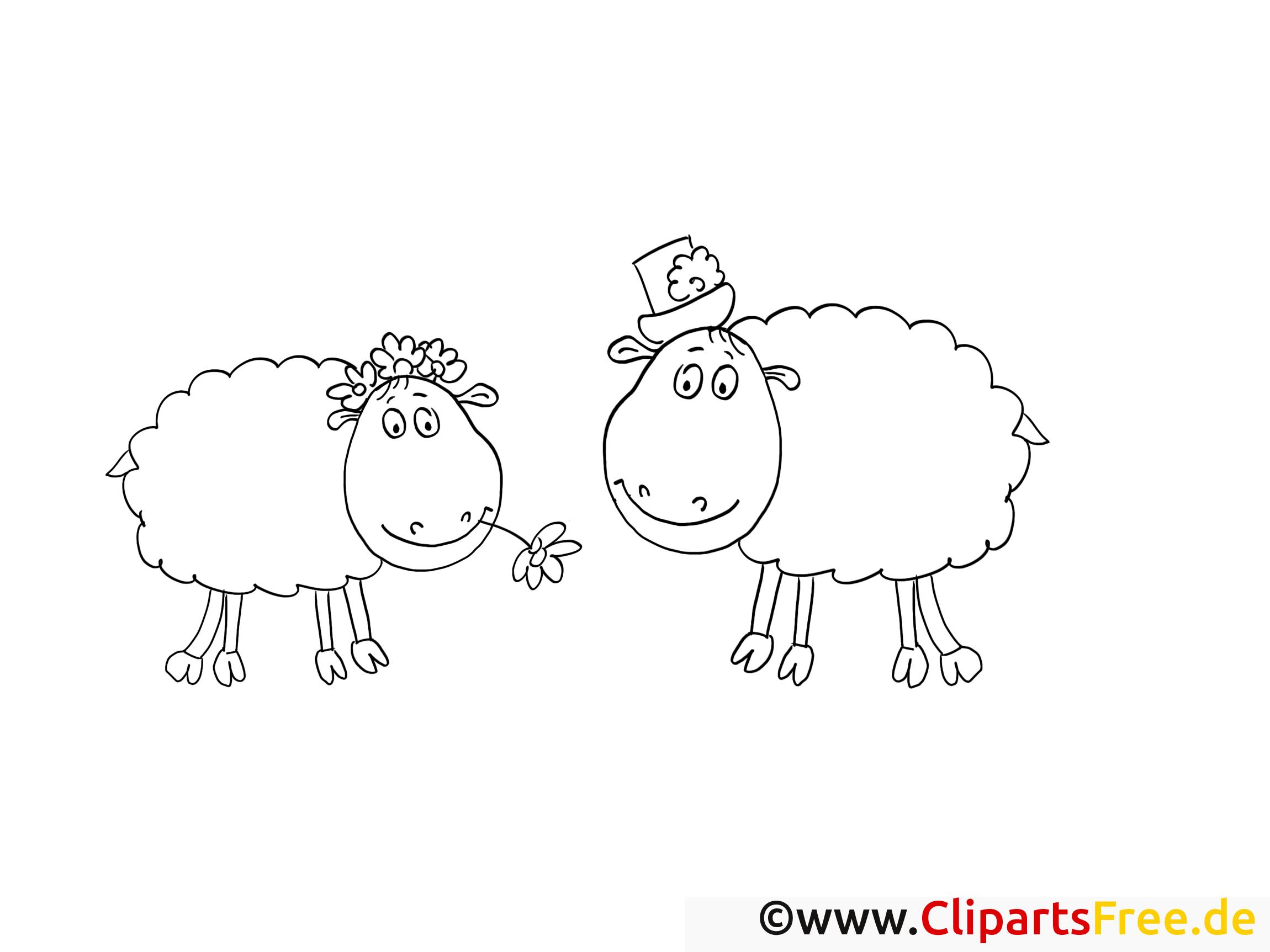 Lustige Schafe - Malvorlagen und kostenlose Ausmalbilder