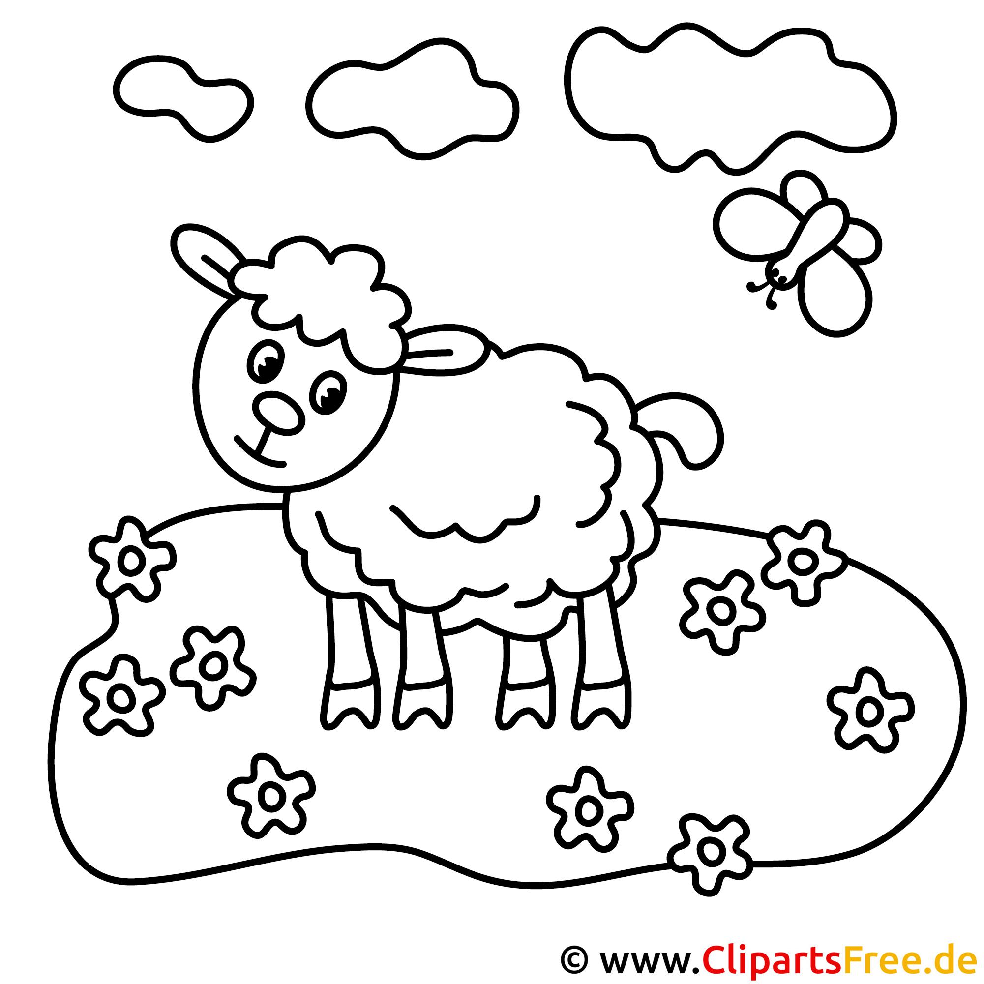 Schaf auf der Wiese Bild zum Ausmalen