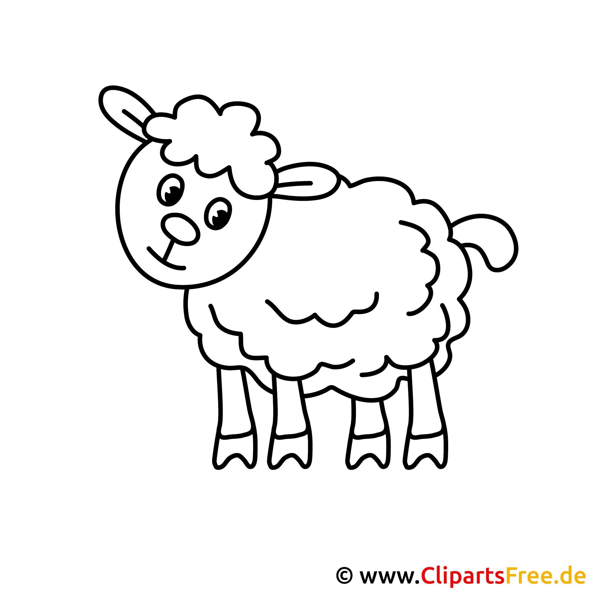 Schaf Bild zum Ausmalen, Malvorlage