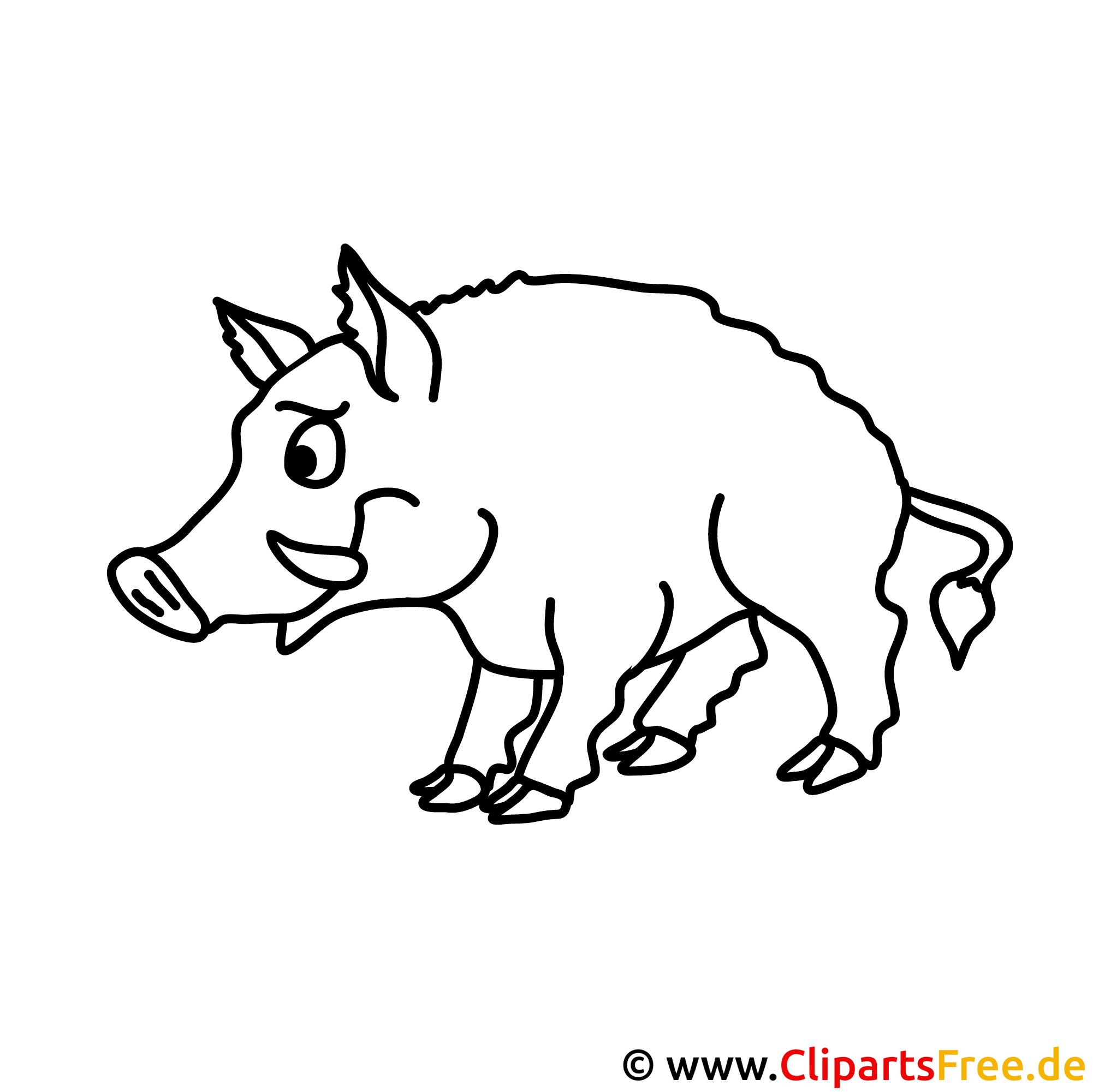 Schwein Bild zum Ausmalen, Malvorlage
