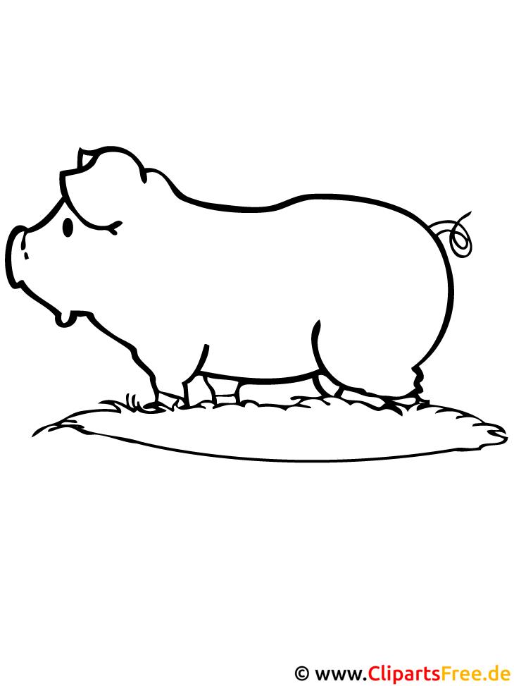 Schwein Malvorlage Bauernhof