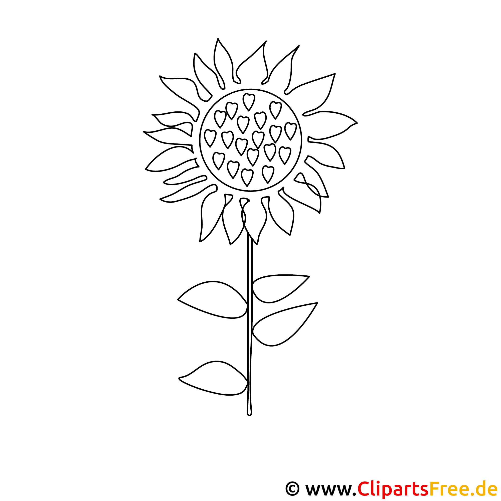 Sonnenblume Ausmalbild gratis