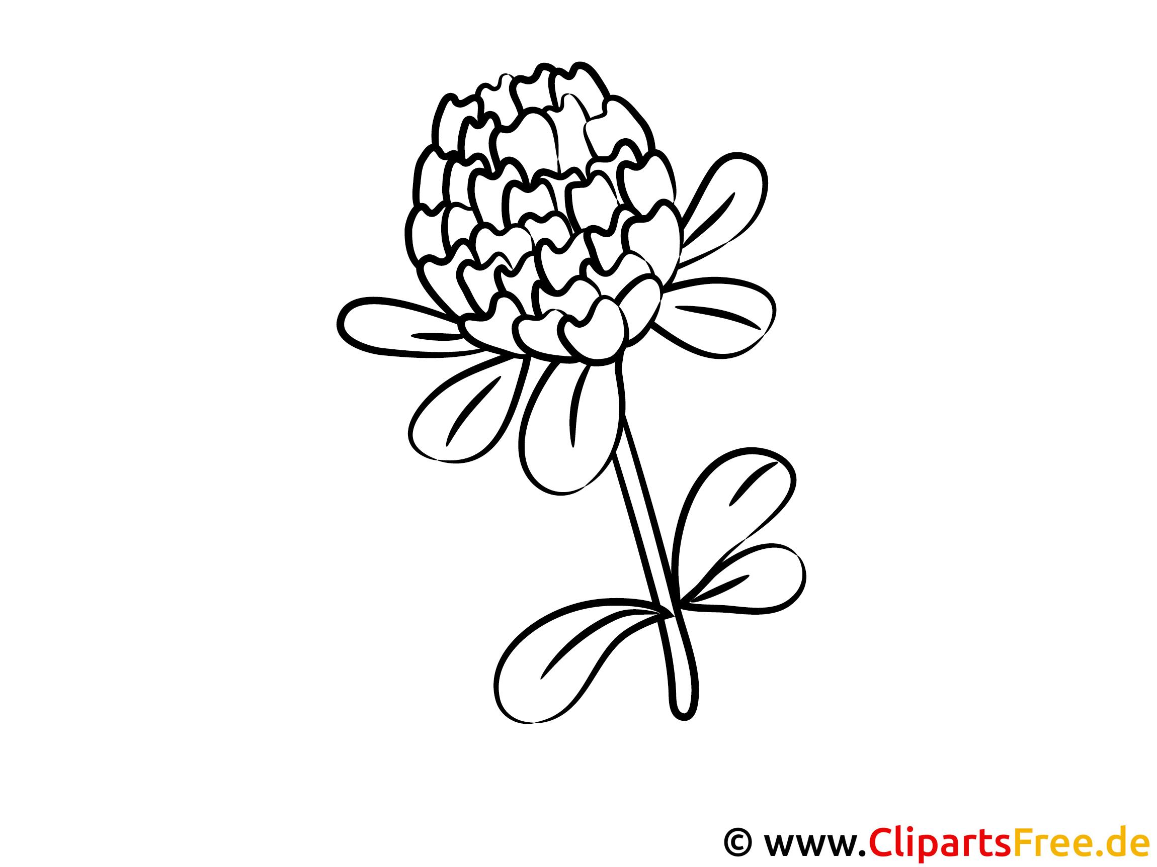 Ausmalbild Kleber - Ausmalbilder mit Blumen