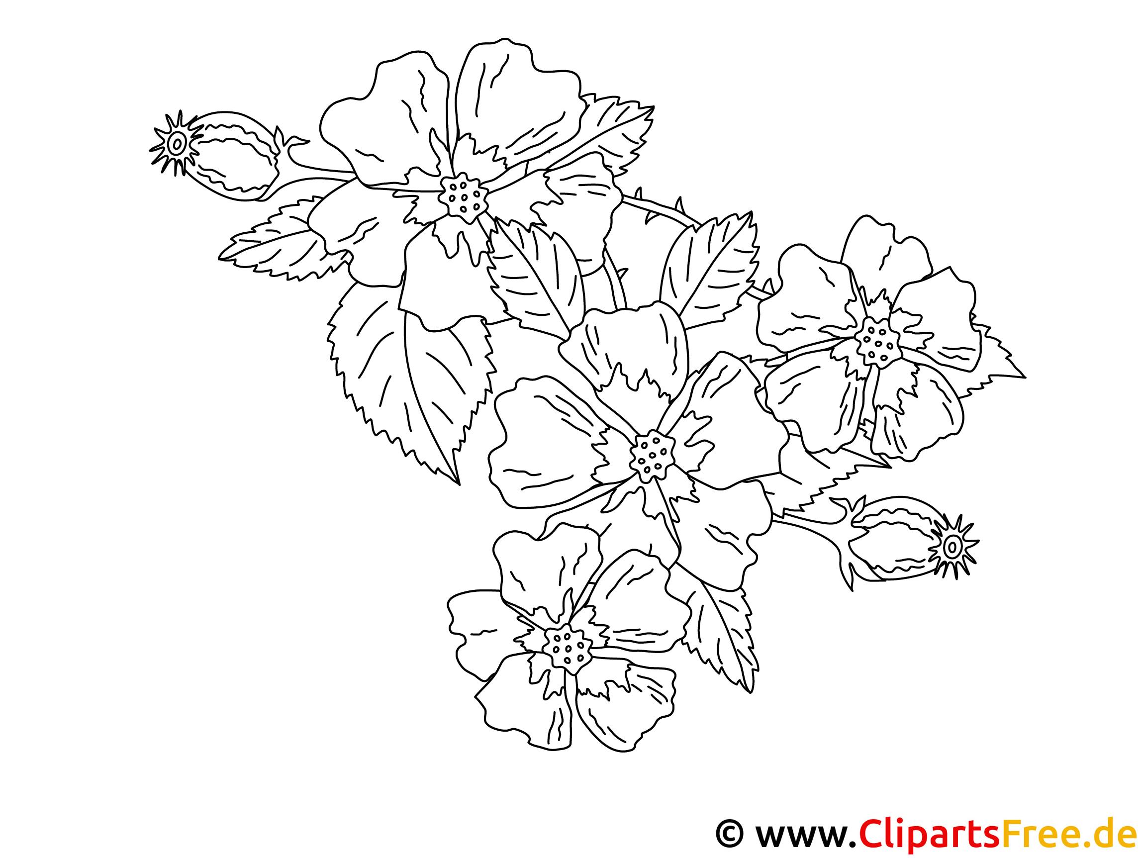 Blumen Ausmalbilder Ausmalen