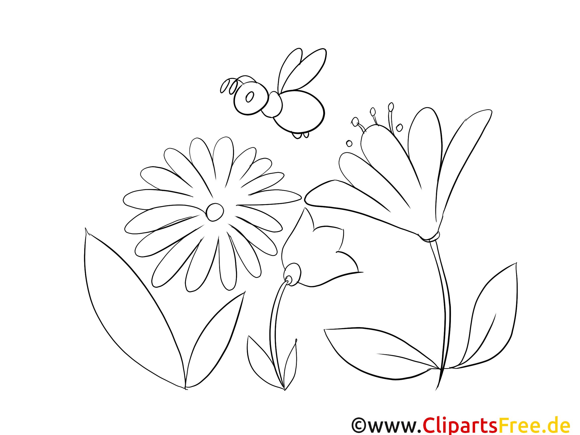 Blumen und Bienen Bild zum Ausmalen