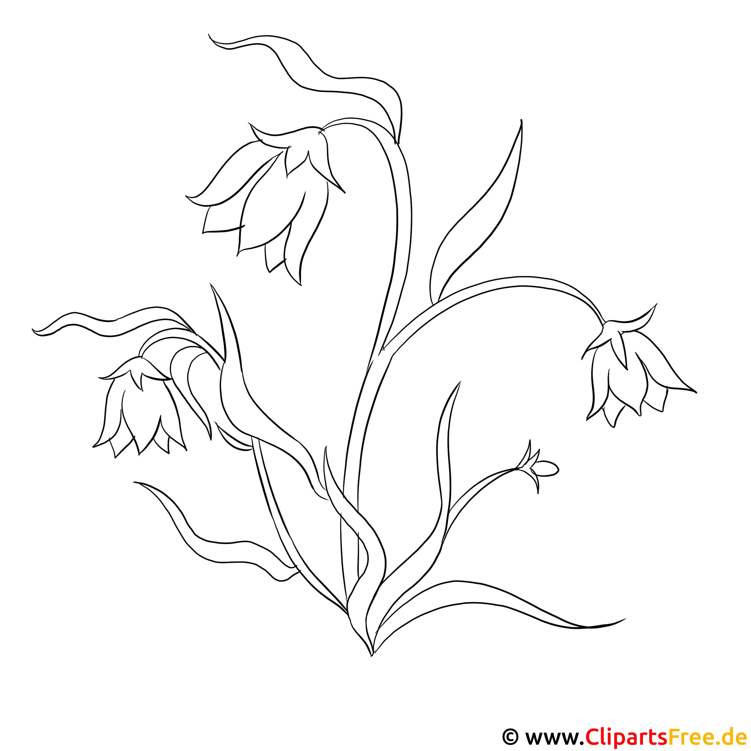 Feldblumen Malvorlagen kostenlos