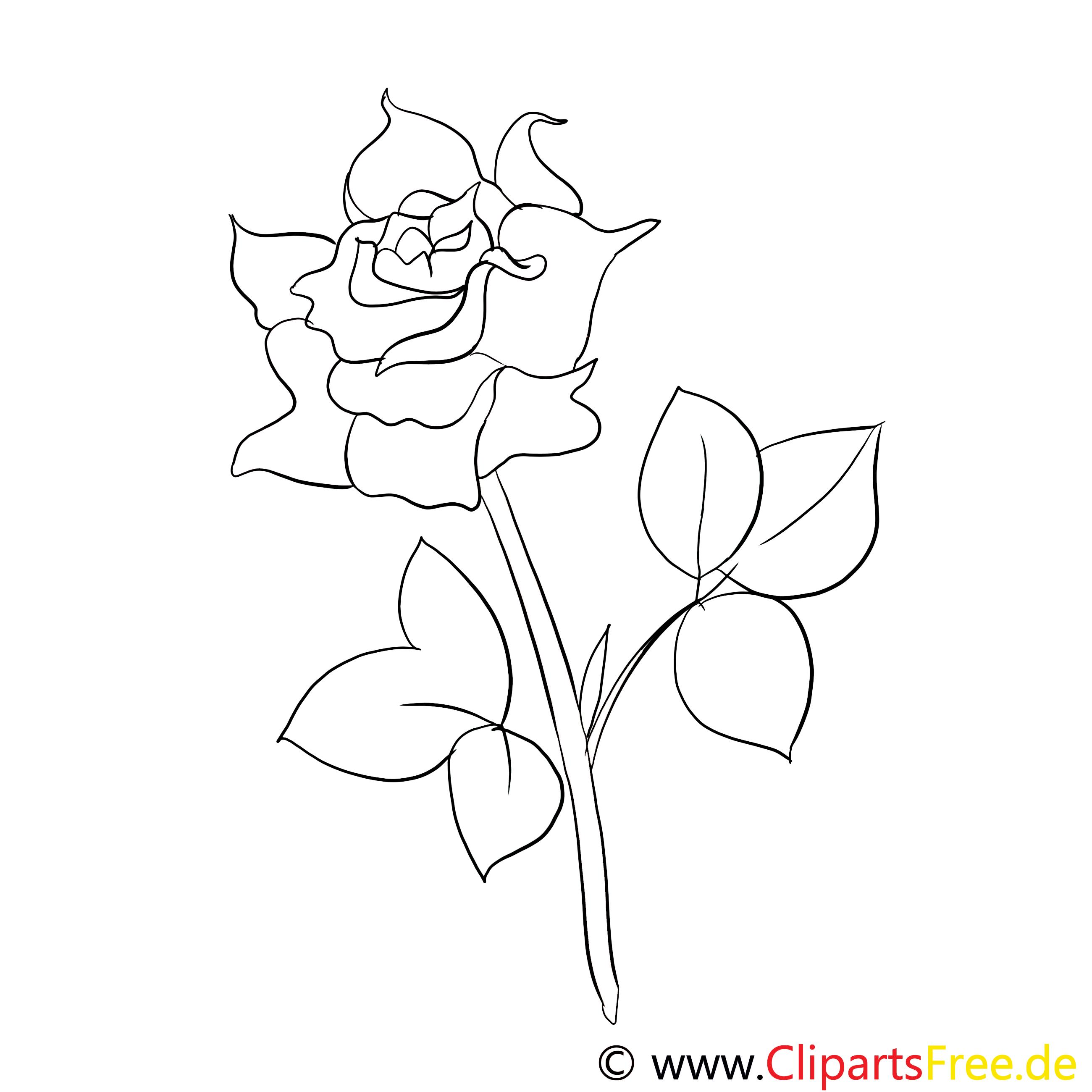 Rose Ausmalbild kostenlos