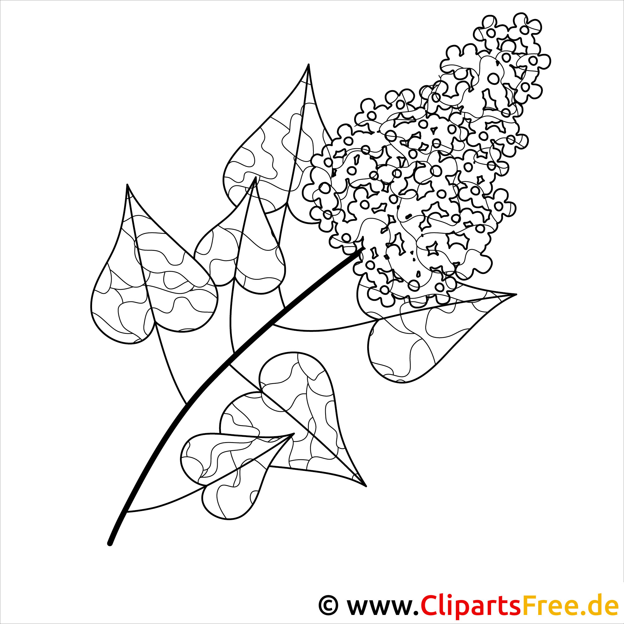 Ausmalbilder Fruehlingsblumen - Flieder