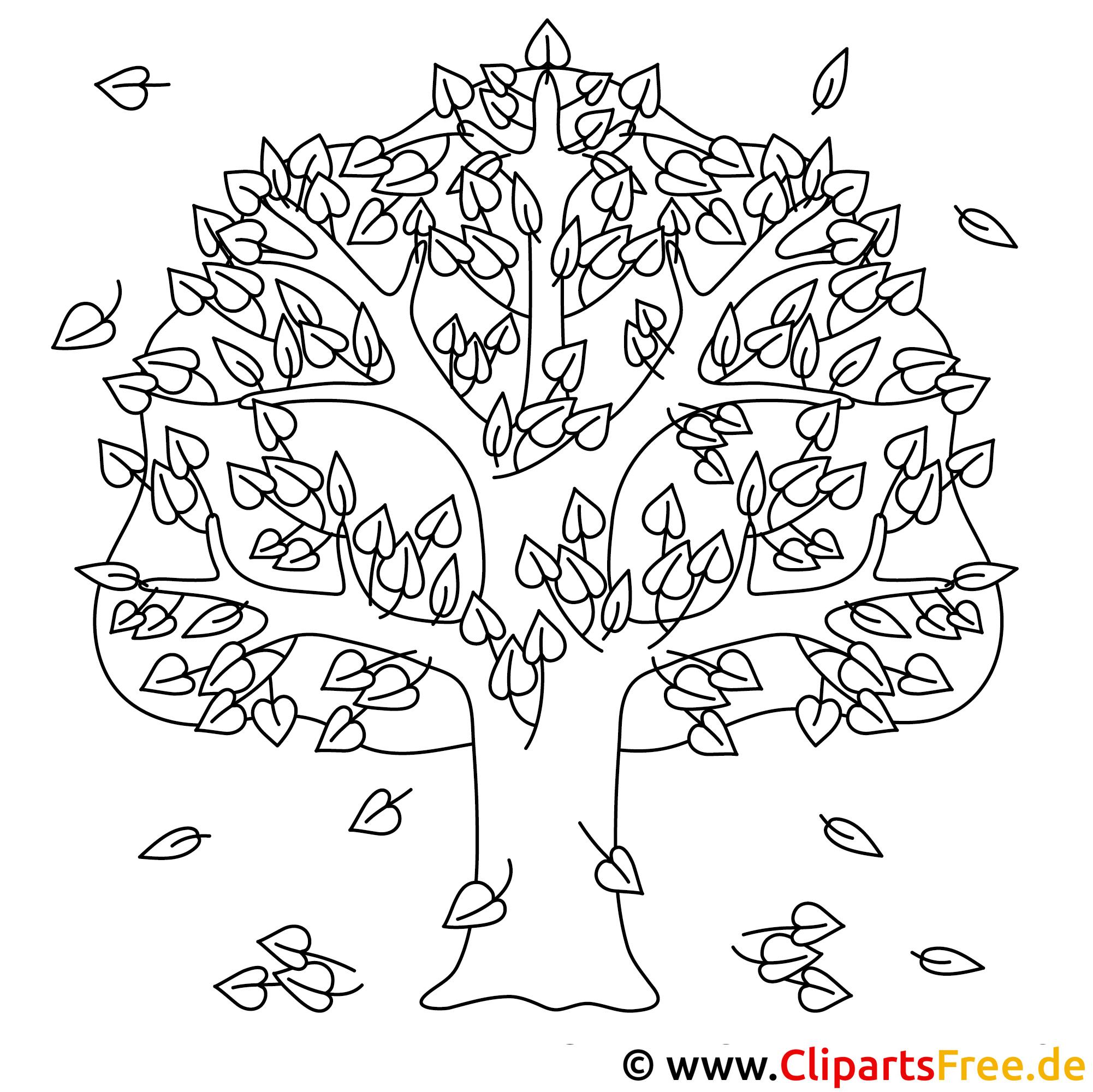 Eiche Ausmalbild gratis - Baum im Herbst