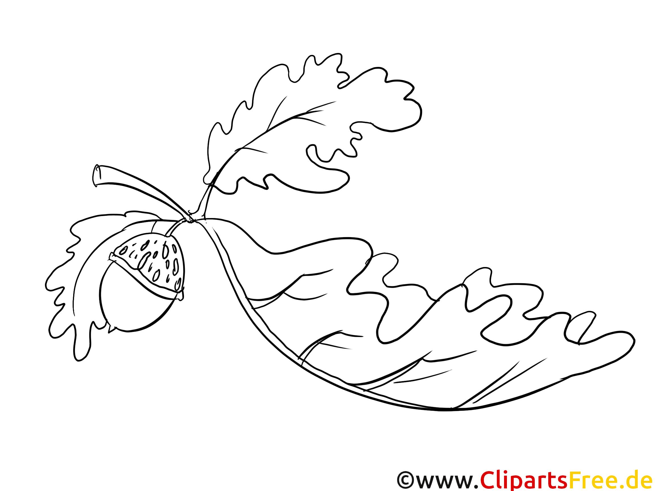 Eichenblatt - Herbstbilder zum Ausmalen