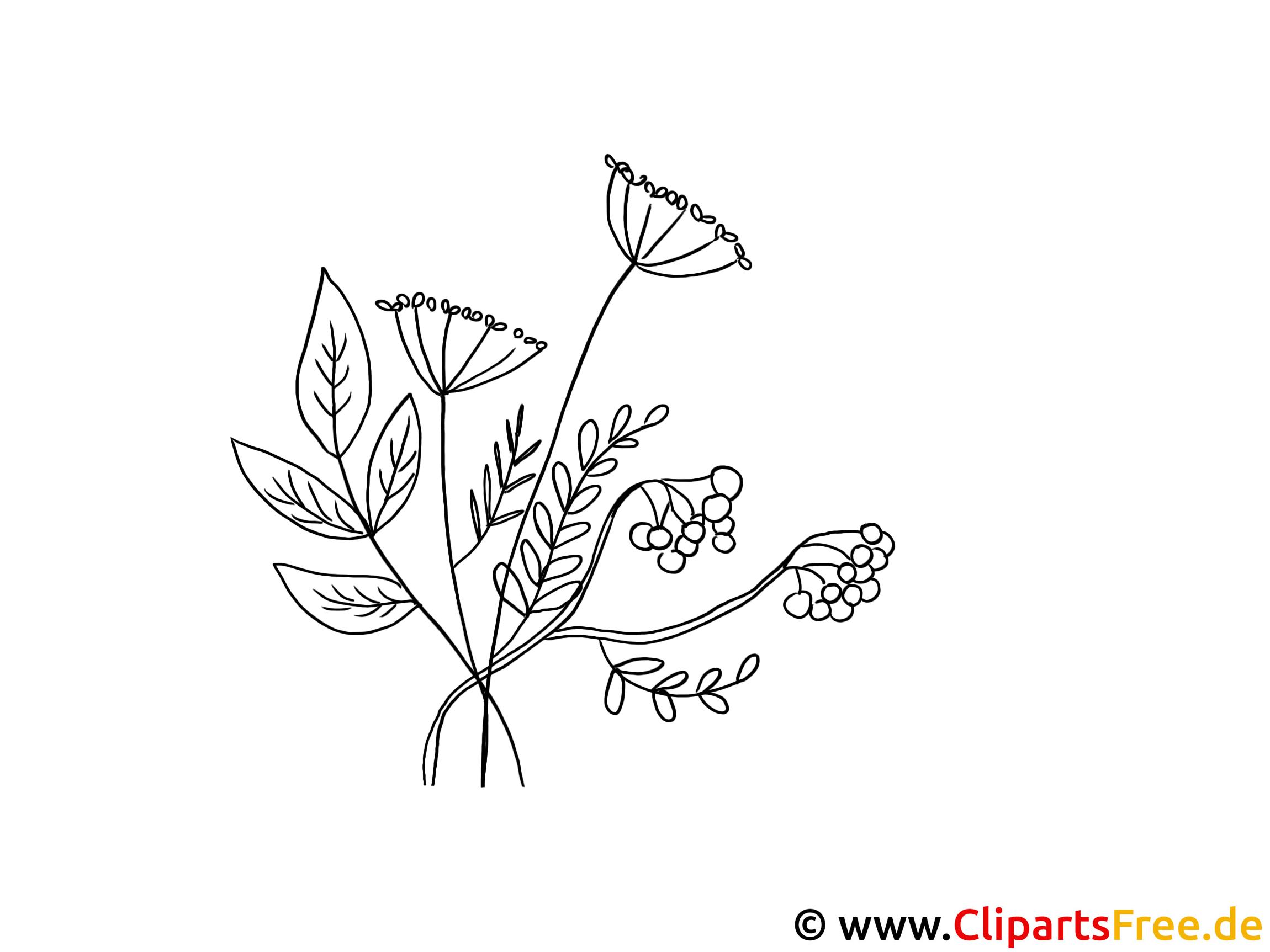 Herbstblumen Bild zum Ausmalen gratis