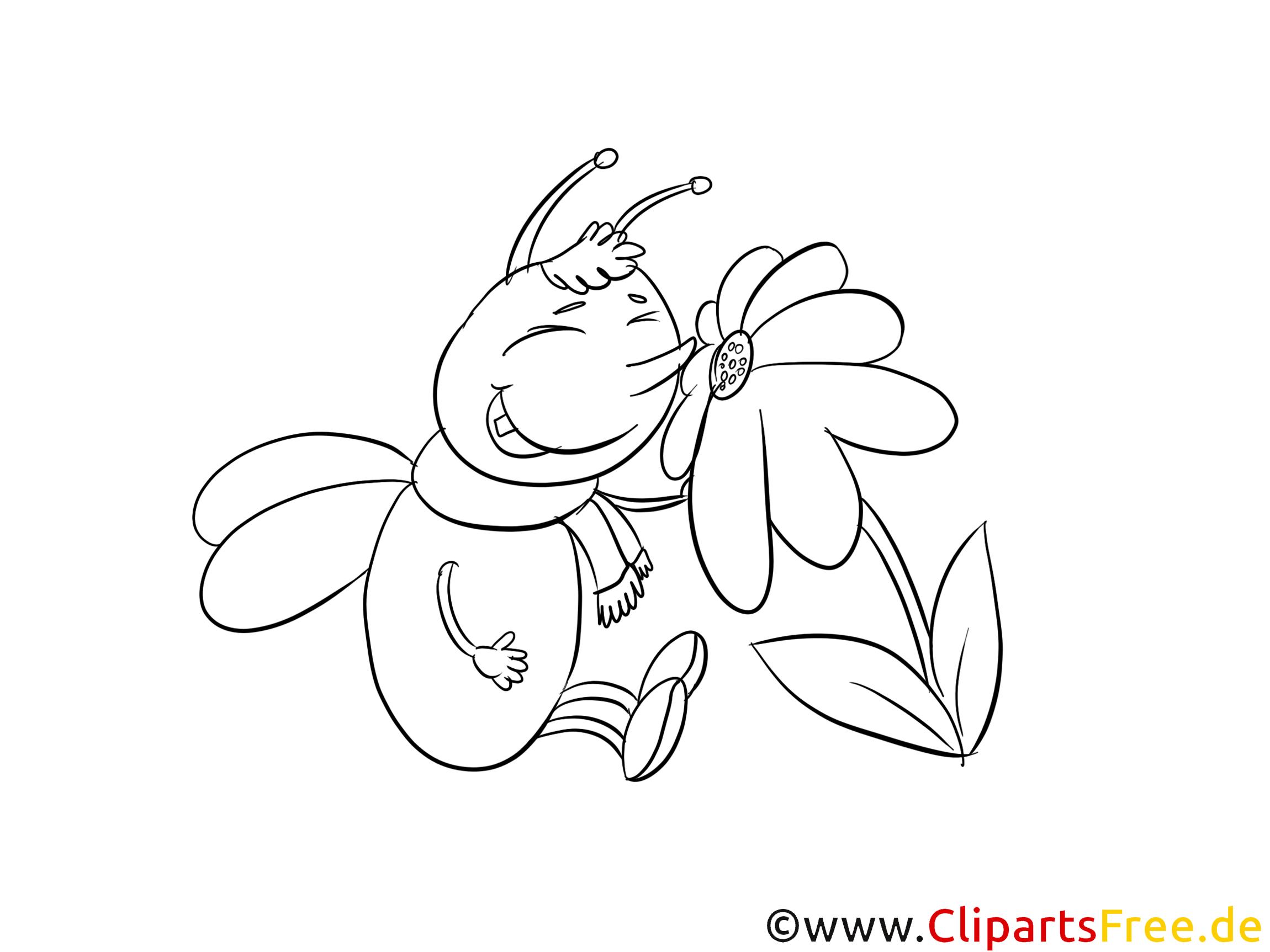 käfer und blume malvorlage