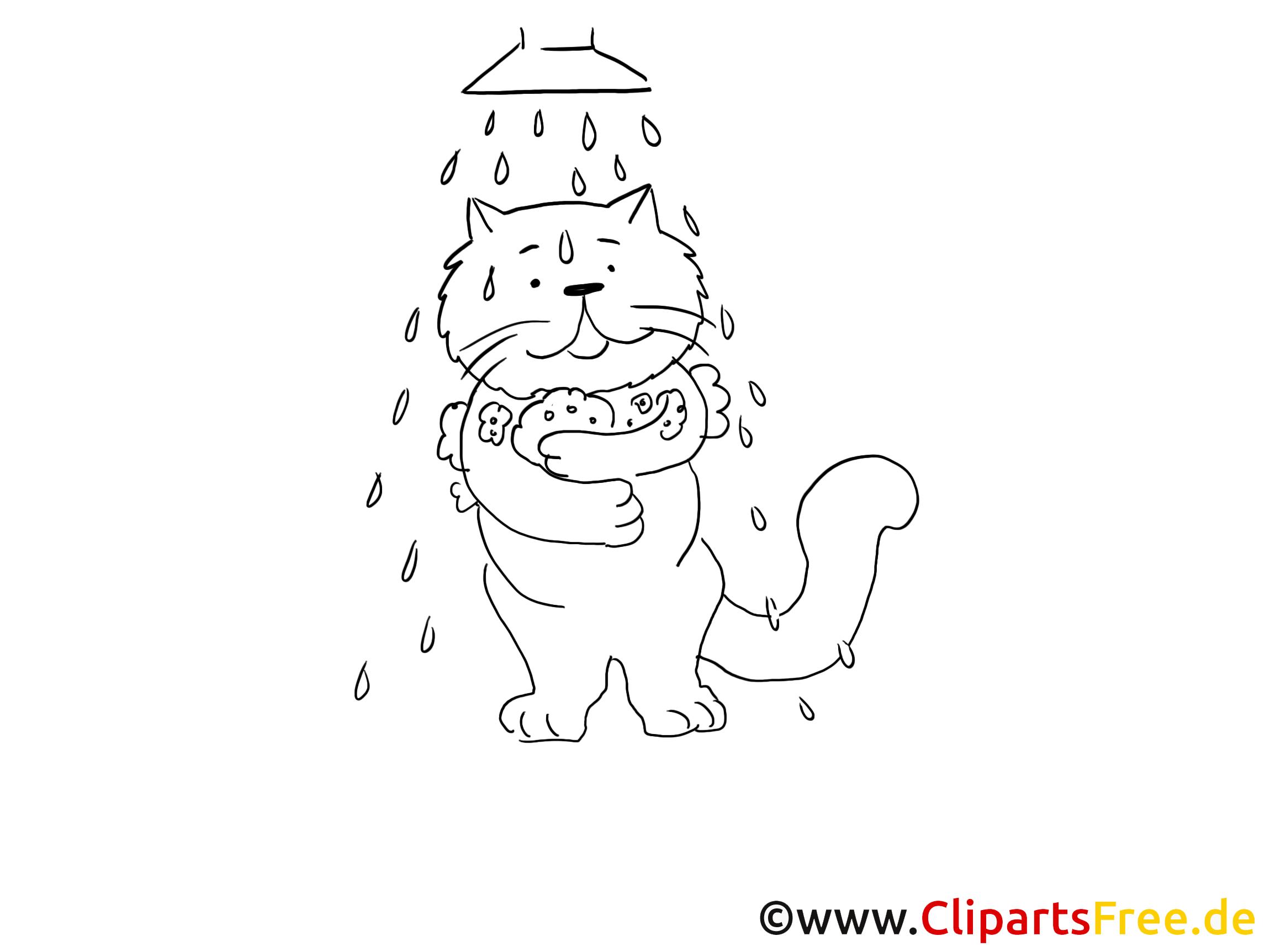 Katzen mögen kein Wasser Bild, Grafik, Malvorlage