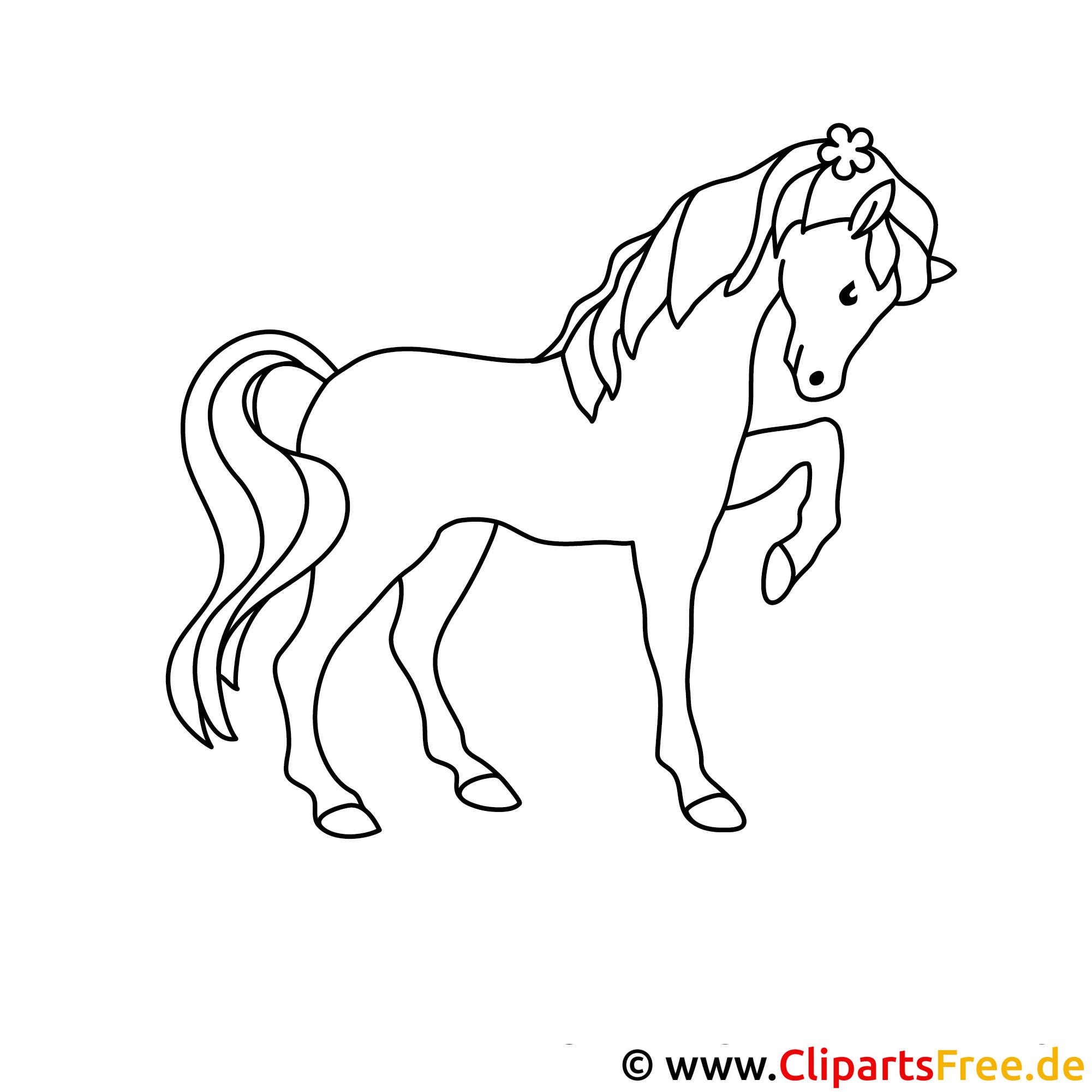 pferd window color bild gratis