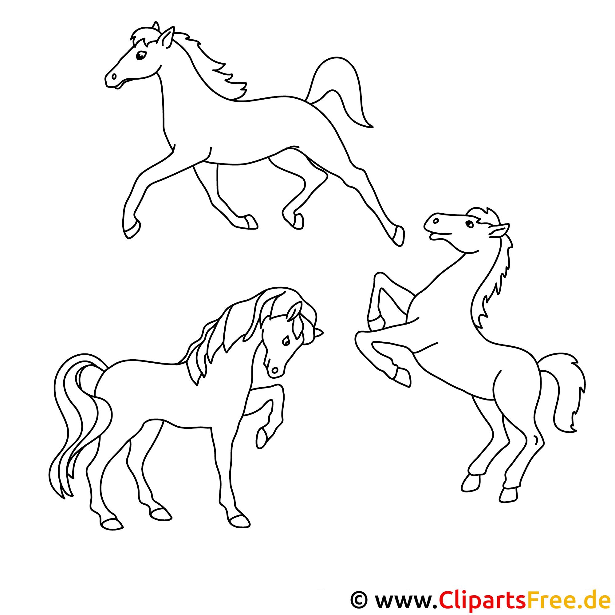 pferde kostenlose malvorlagen