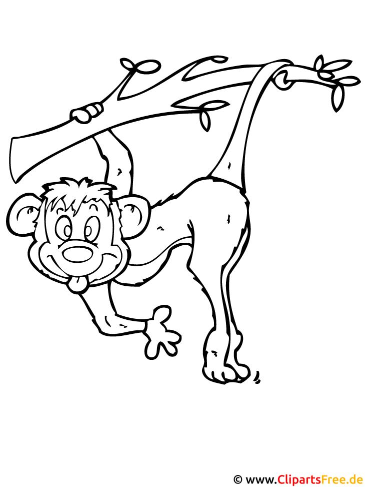 affe malvorlage gratis  zoo malvorlagen