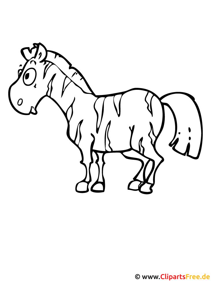 zebra ausmalbild  tierbilder zum ausmalen