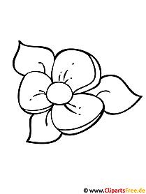 Blumen Ausmalbilder