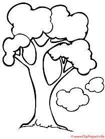 Frühling Malvorlage Baum