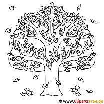 Sidefri - træ i efteråret