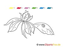 Flower paint by numbers coloring sheet to print