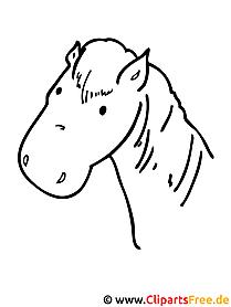 Pferde Ausmalbilder