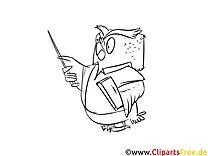 Eule Cartoon Bild, Malvorlage, Ausmalbild kostenlos